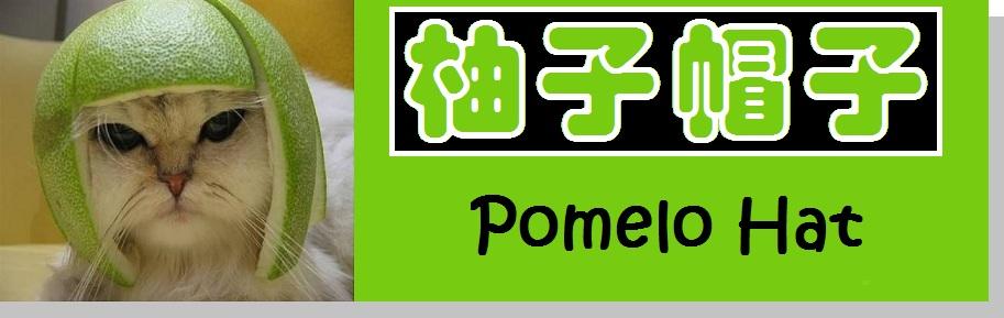 Pomelo Hat 柚子帽子