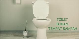 http://www.jurukunci.net/2013/11/7-barang-yang-berbahaya-bila-dibuang-di-toilet.html