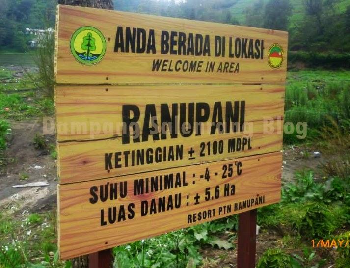 kawasan desa Ranu Pani danau