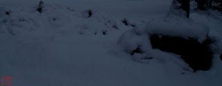 Parterre de neige