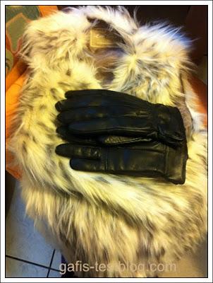 Weste und Handschuhe