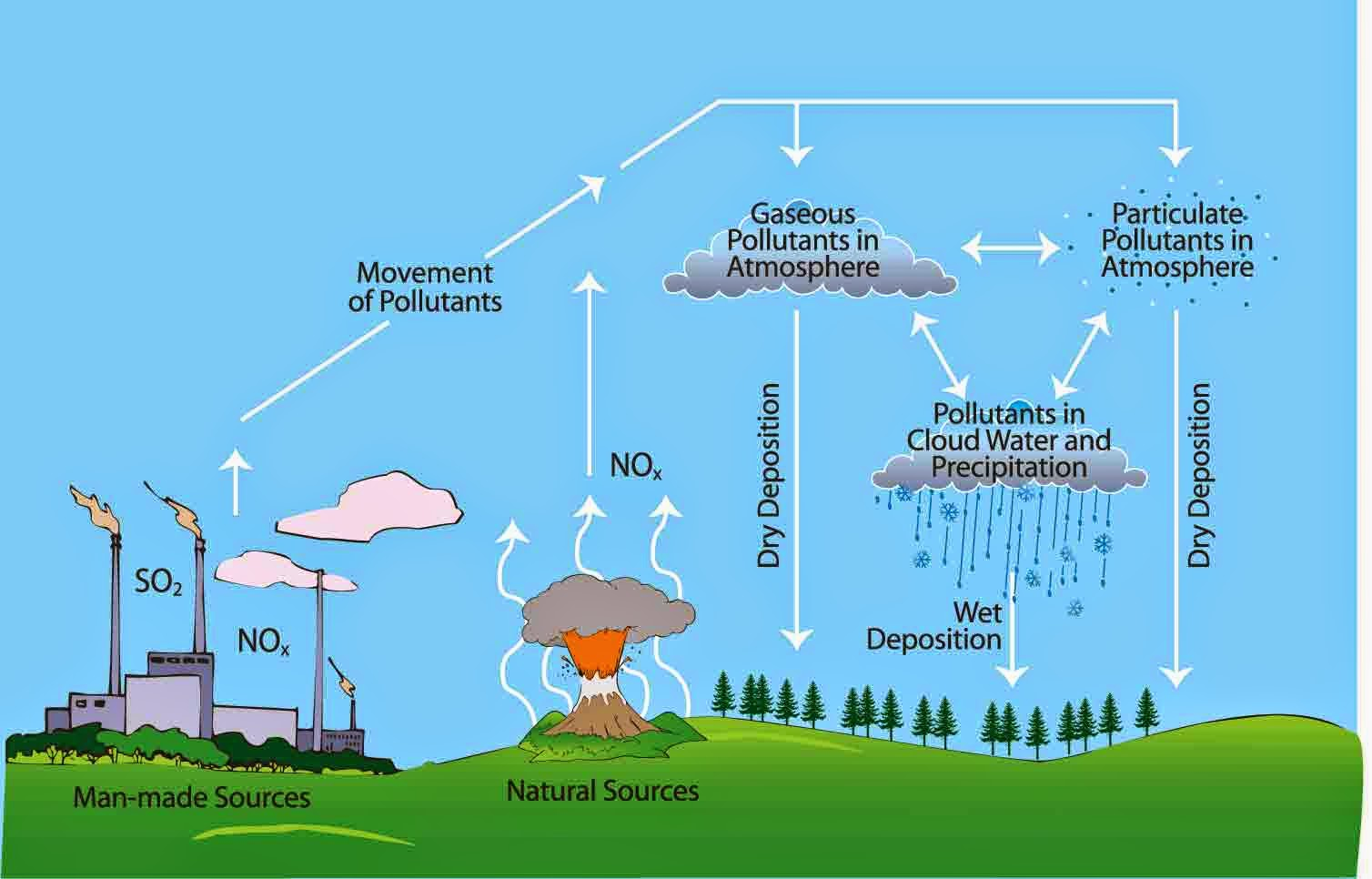 essay on acid rain and its effects Reduced ph level in water acid rain can make the water in lakes and streams more acidic and discharge toxic amounts of aluminum into a water system.