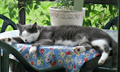 """""""Take rest; a field that has rested gives a bountiful crop.""""  ~Ovid"""