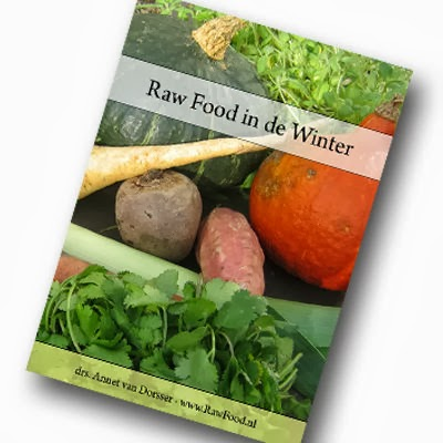 "Aanbieding eBook ""Raw Food in de Winter"""