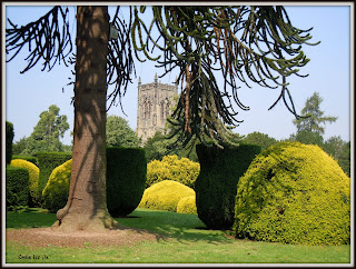 Church Through The Trees ... Elvaston Castle