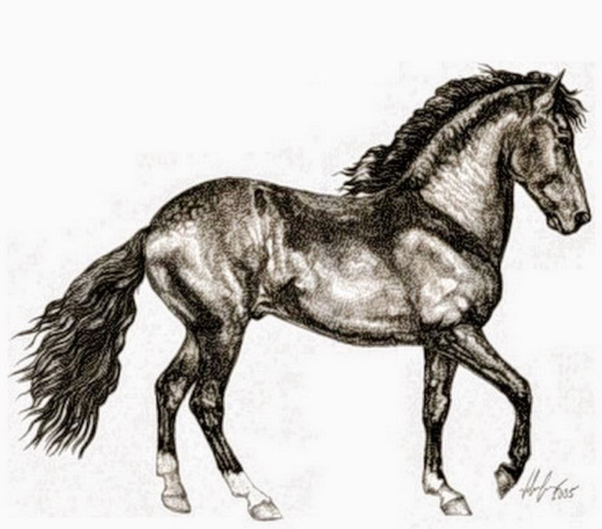 dibujos-a-lapiz-de-caballos