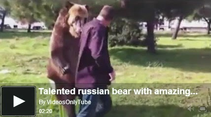 http://funkidos.com/videos-collection/amazing-videos/talented-russian-bear-with-amazing-skills