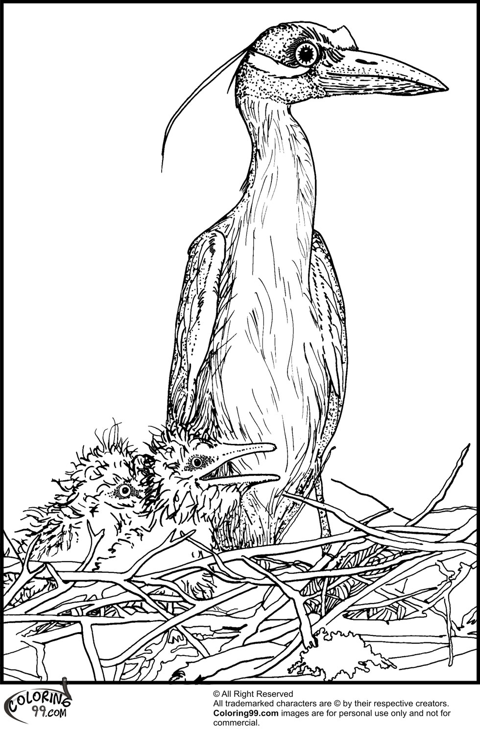 Stork Coloring Pages picture