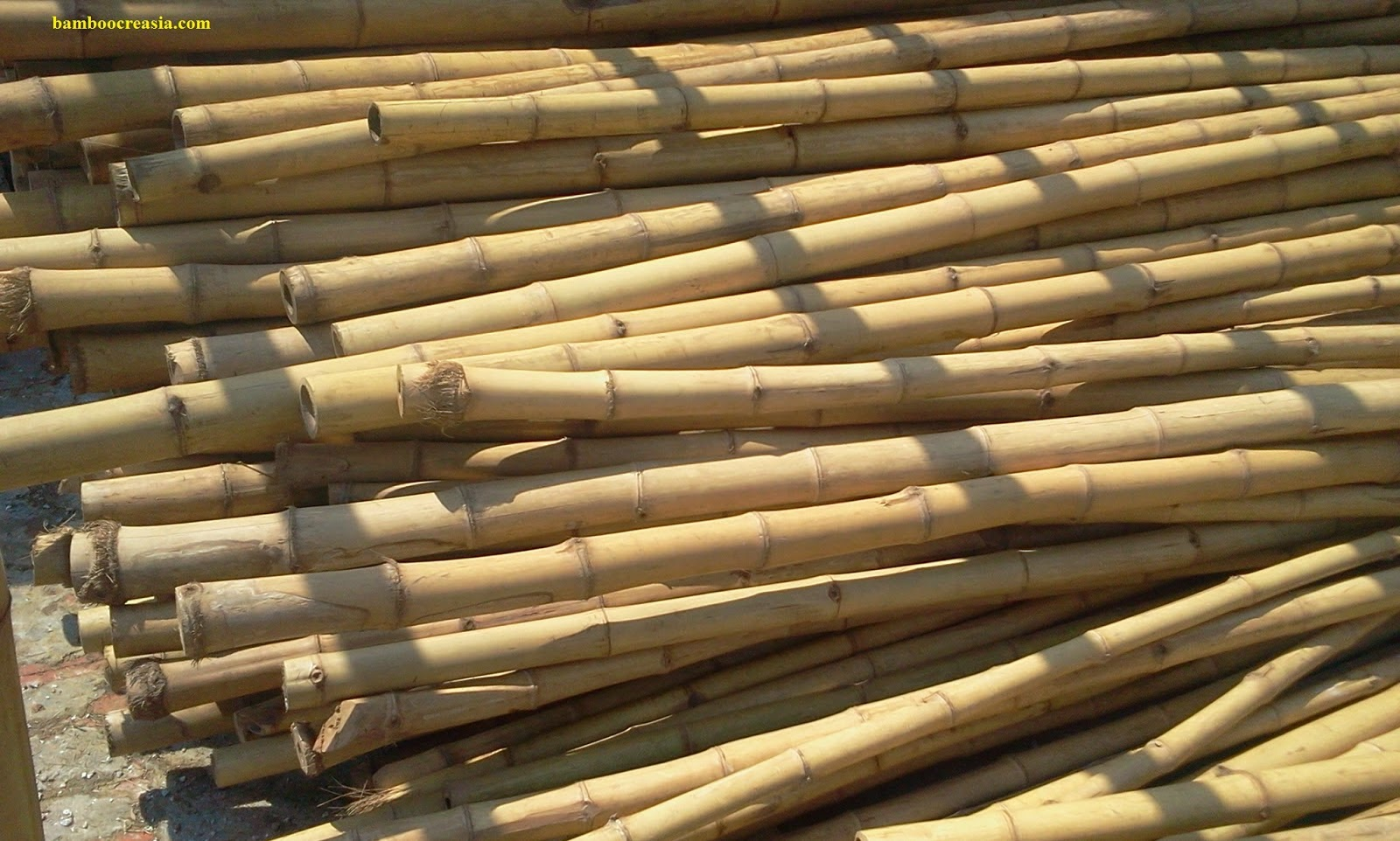 Black Bamboo Poles ~ Quality bamboo and asian thatch ply buy for