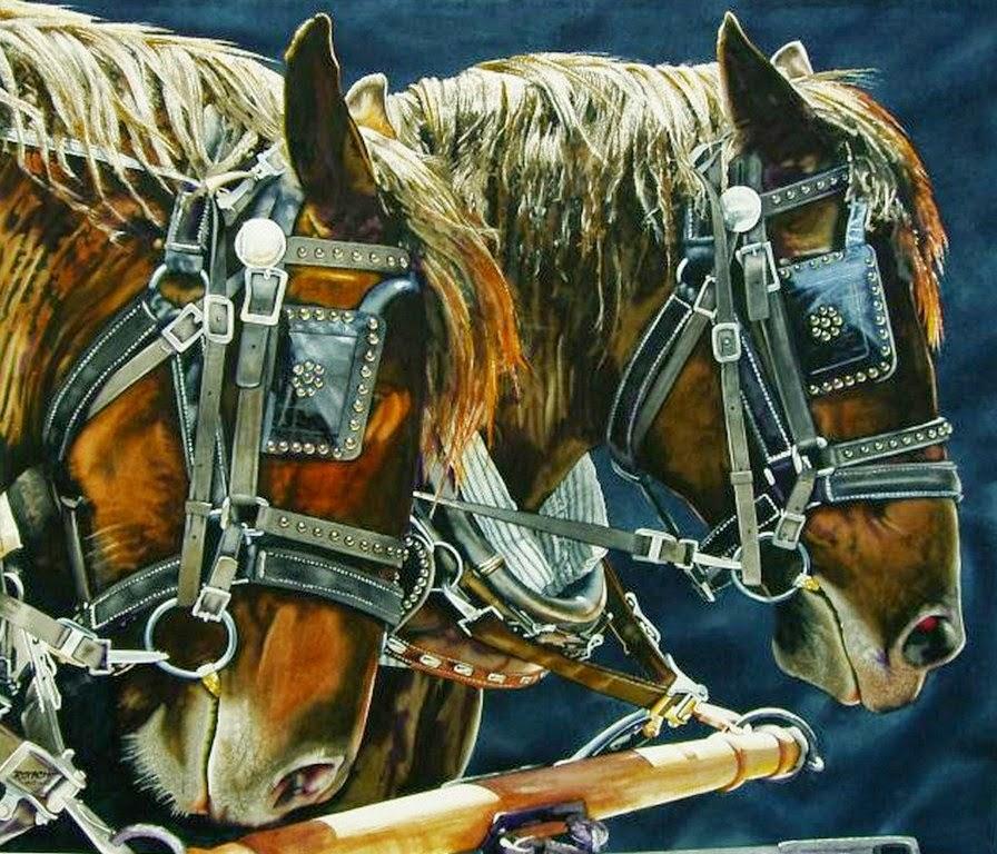 retratos-caballos