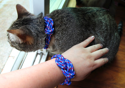 4th July lope cat collar 01