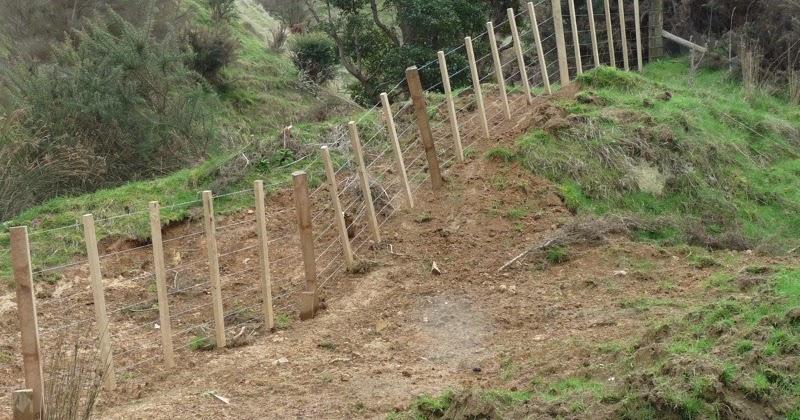 Image Result For Dog Training Fence