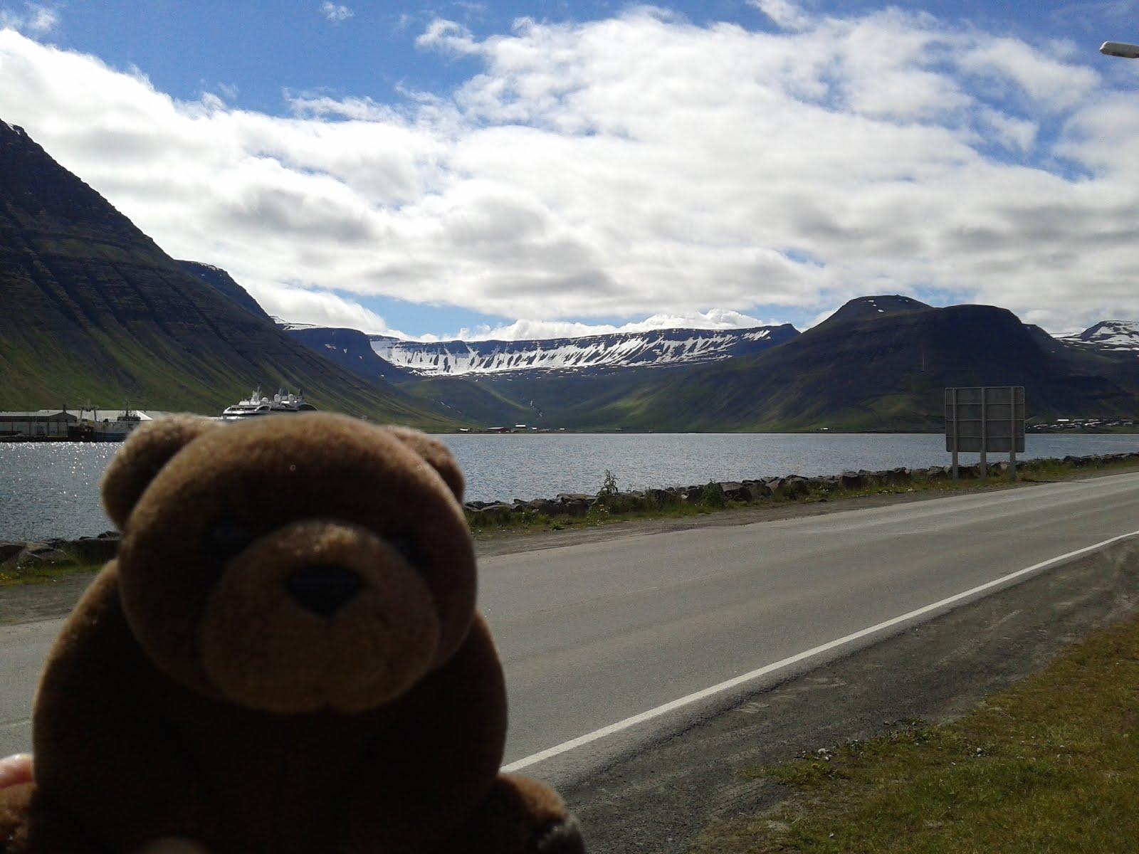 Teddy Bear in Ísafjörður, Iceland
