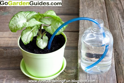 Invention of Watering Garden Plants using Creative Concepts of Protection