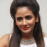 Parul Yadav Photos at South Scope Calendar 2014 Launch Photos 252875%2529