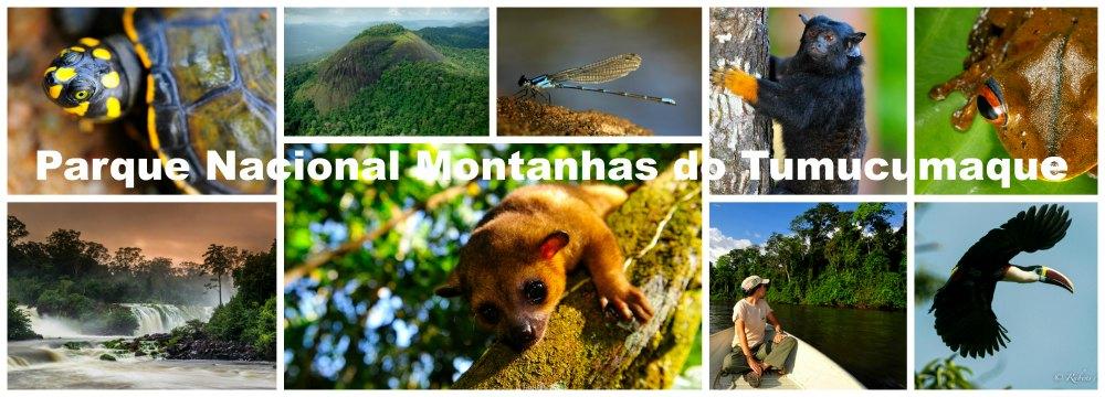 Parque Nacional Montanhas do Tumucumaque