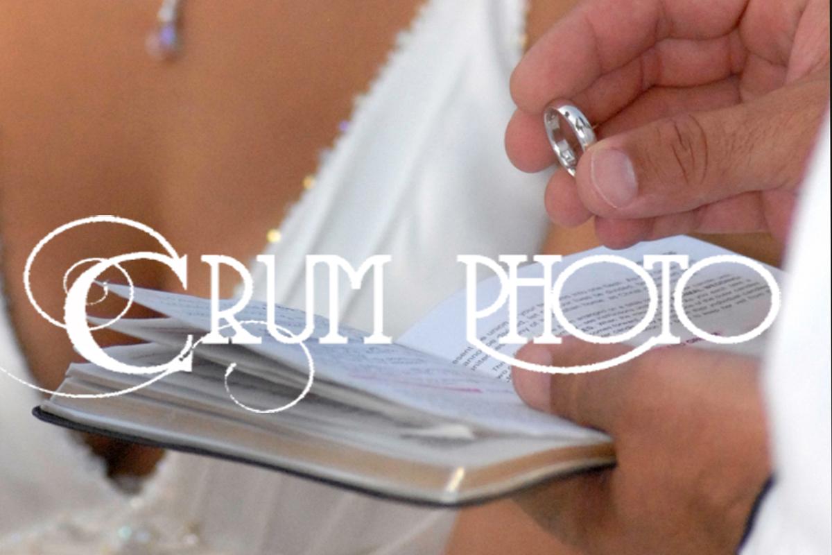 Tampa Bay Weddings