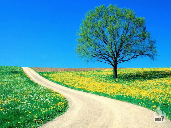 Hidup ini merupakan sebuah perjalanan di mana dalamnya merupakan medan pertempuran..