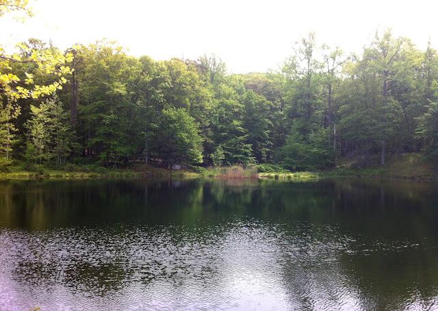 Doodletown Reservoir