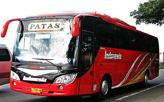 Perintis dan Pelopor Angkutan Bus Semarang - Surabaya Yang Eksis