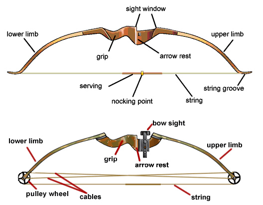 Bowfishing bowfishing bows cheapraybanclubmaster Image collections