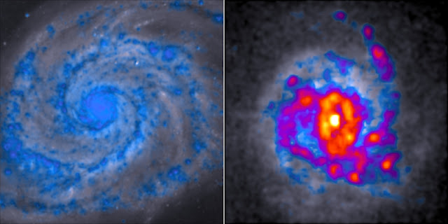 Regular spiral galaxies, such as the 'whirlpool galaxy' on the left, form far fewer stars than the clumpy galaxy on the right. The blue regions have the least star-forming gas and red-yellow regions have the most. Credit: Dr Danail Obreschkow, ICRAR. Image uses data from the Hubble Space Telescope.