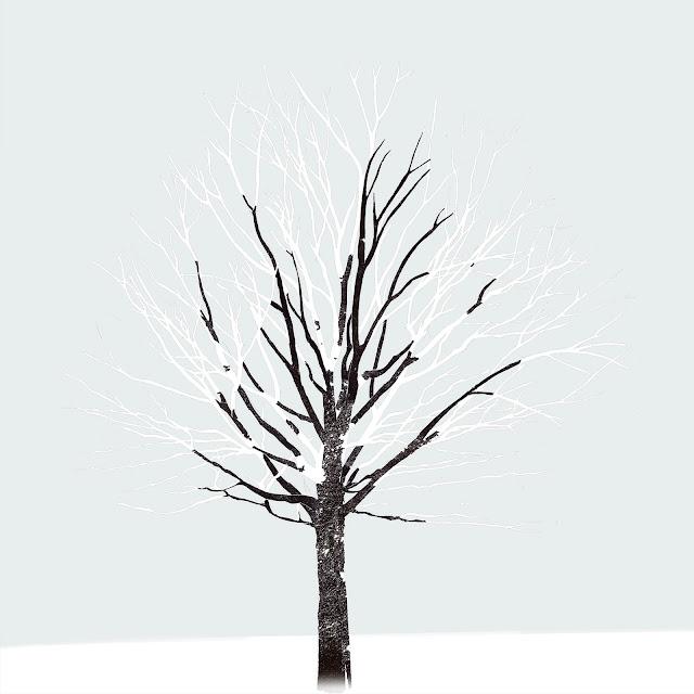 frio, árbol, nieve