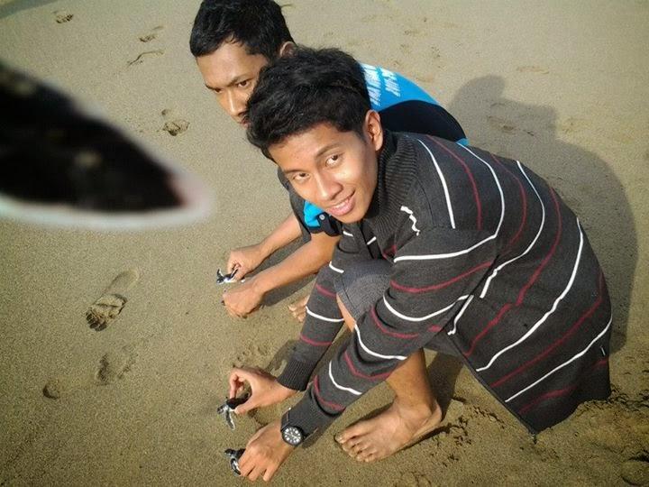 Pantai Sukamade Surganya Para Penyu