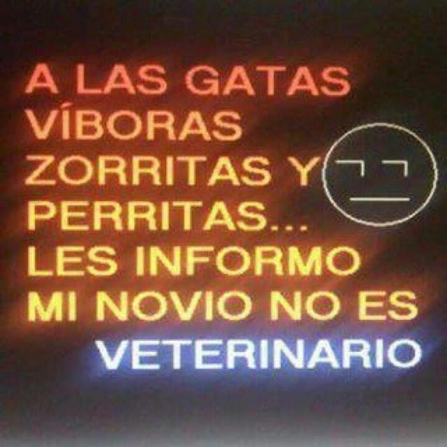 CHISTES ZORRAS, PERRAS, GATAS....