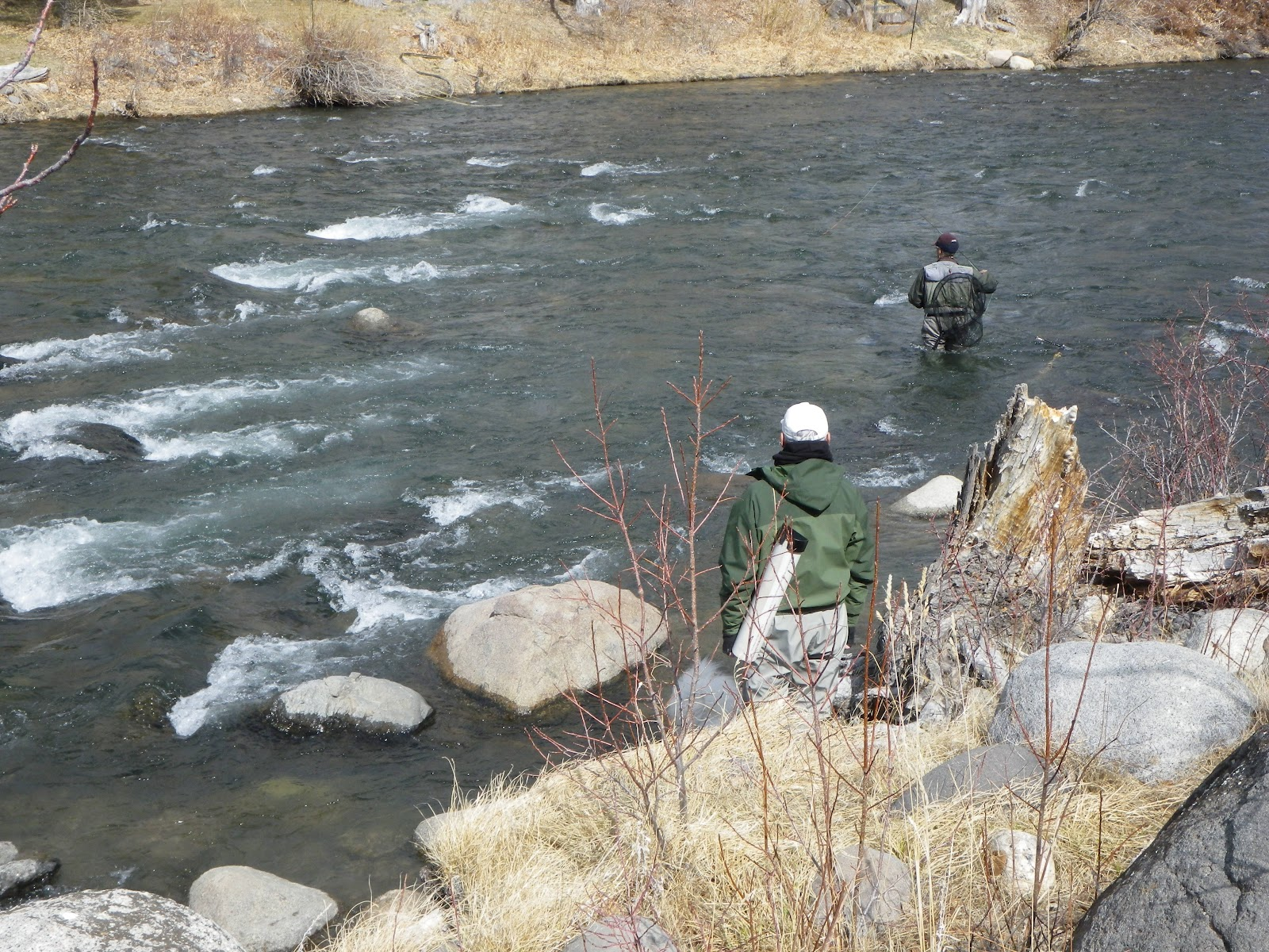 California Fly Fishing Western Regionals For Us Fly