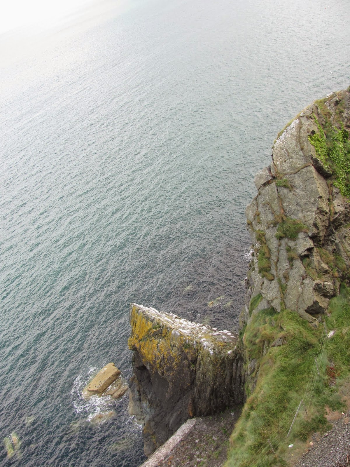 Cliffs of Bray to Greystones