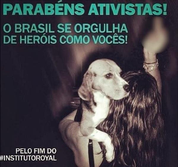 contra testes em animais brasil