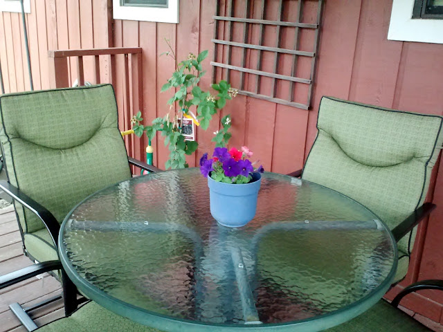 chore,prompt,clean,patio,table,chairs,flowers,