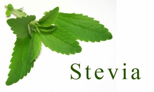 cake con stevia e farro senza grassi