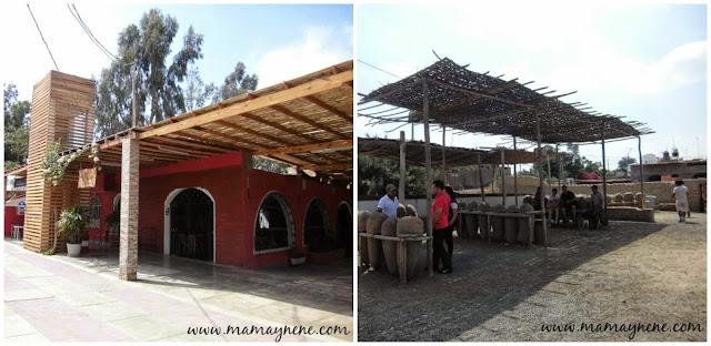 ICA-PERU-VINOS-PASEOS-CATADOR-INTERIOR-TOUR-MAMAYNENE