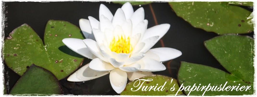 ~Turid's papirpuslerier~