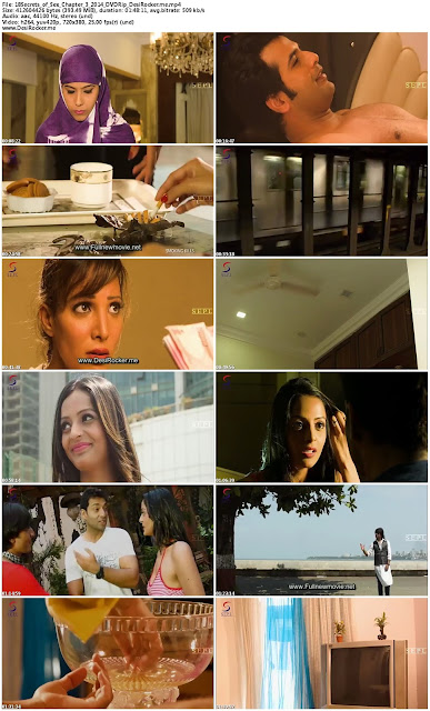 Secrets of Sex Chapter 3 (2014) Hindi DVDRip 350MB Download