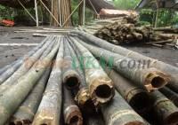 Produk bambu hasil pengawetan