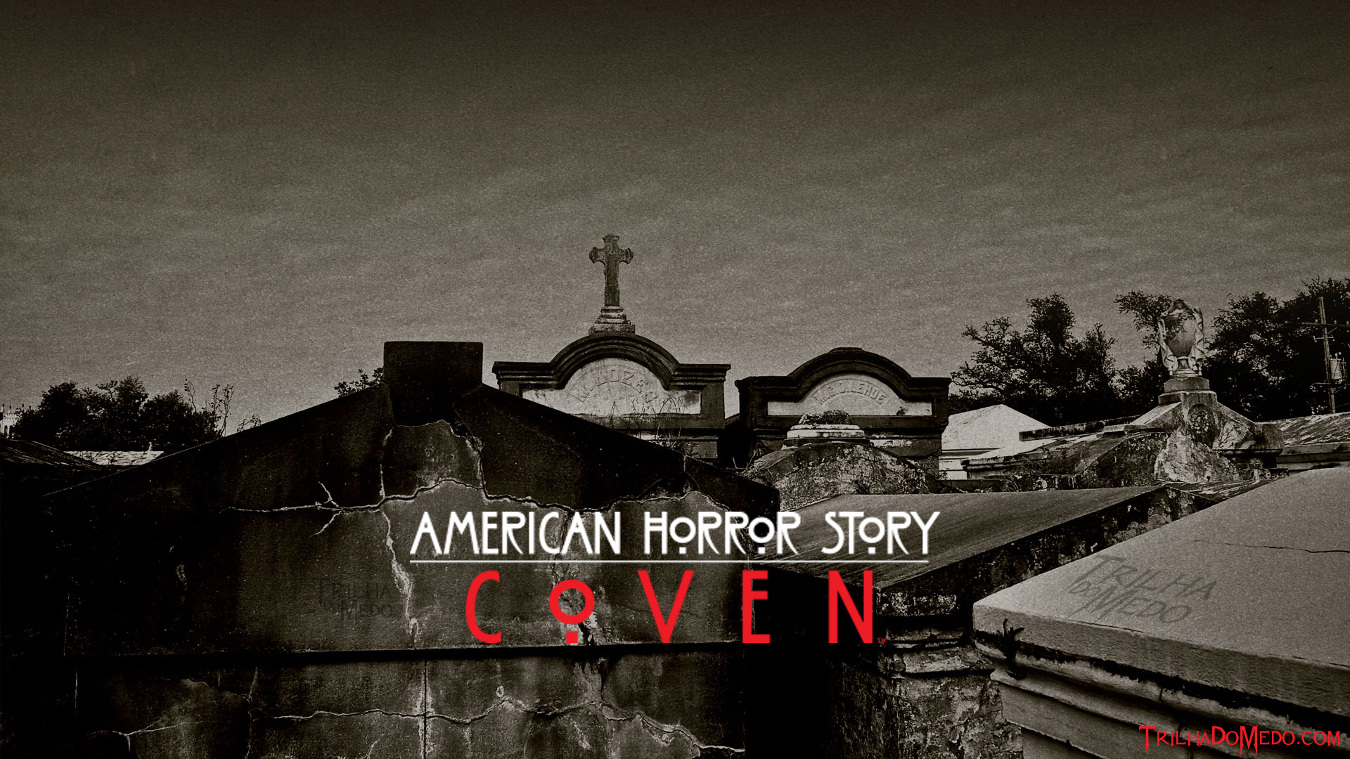 american horror story coven desktop wallpaper