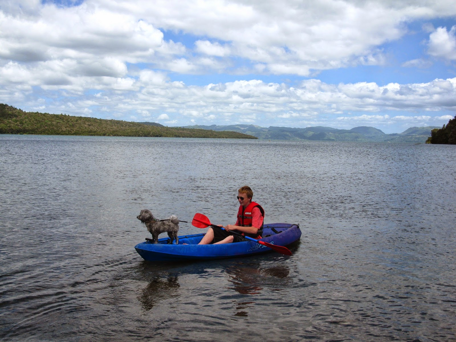 Kiwi Good Life - Vicki Annison