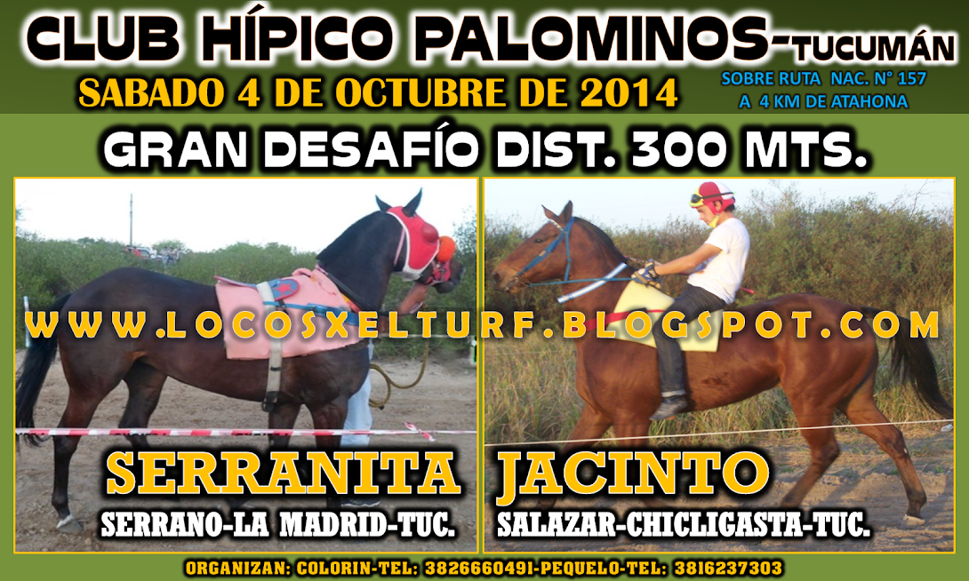04-10-14-DESAF-HIP. PALOMINOS