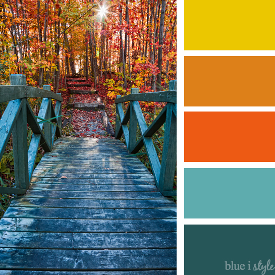 Different colors including non traditional like teal and trend home