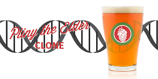 Pliny the Elder Clone - from Austin Homebrew