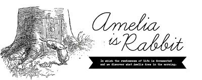 Amelia is Rabbit