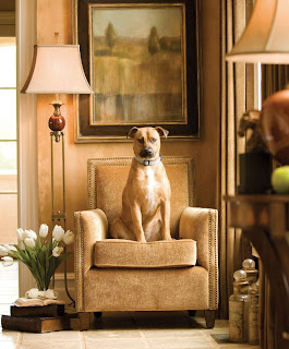 the essentials inside home decor by Uttermost