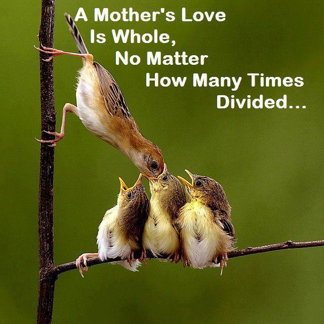 Mothers love are same every where around the earth: