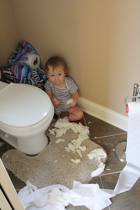 dunking rolls of toilet paper into the toilet is fun apparently at