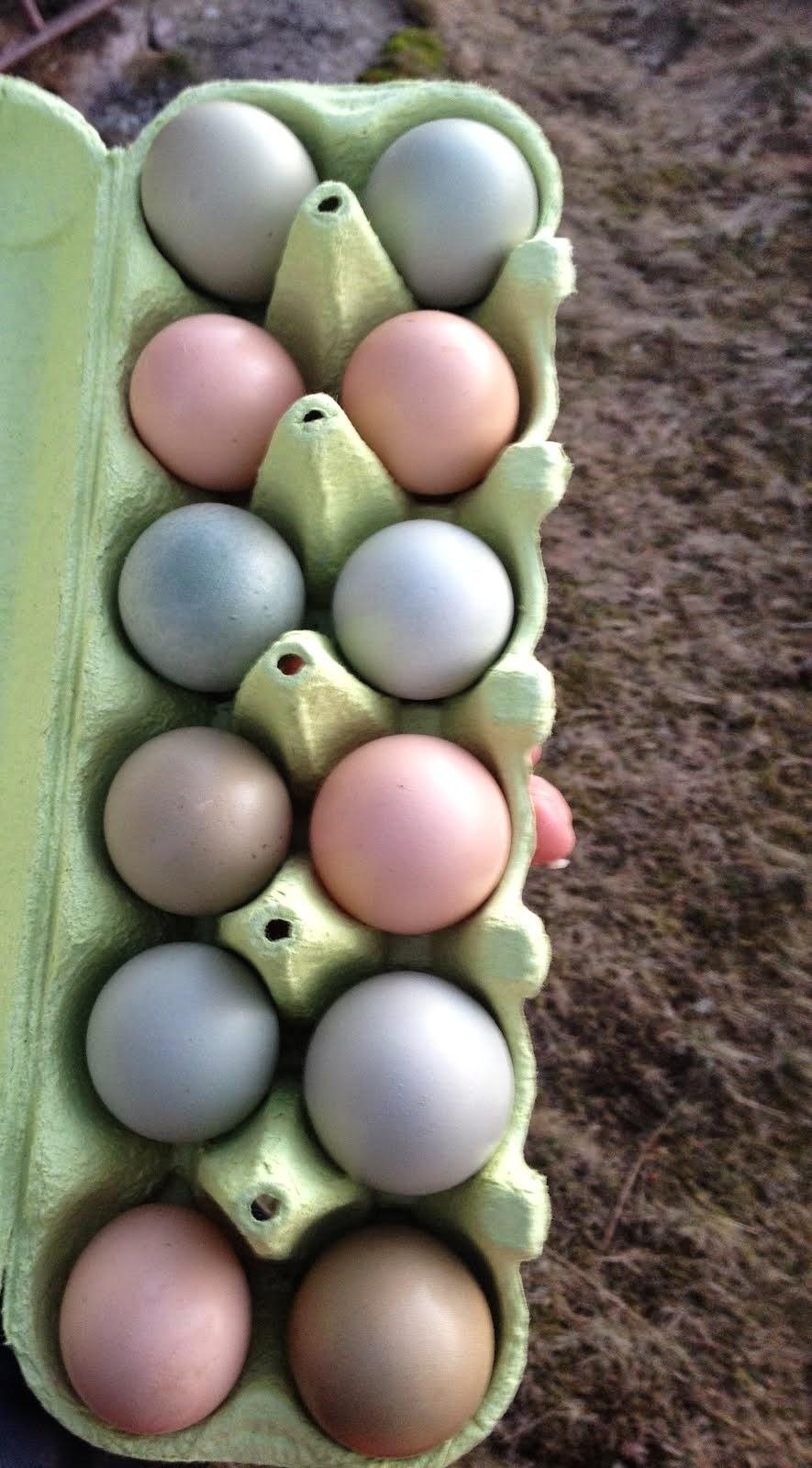 Nytt för i år är rosa ägg!