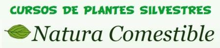 Cursos de plantes silvestres