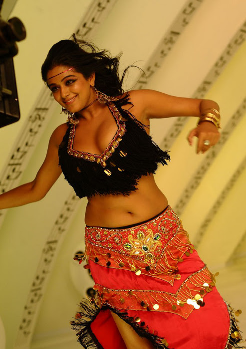 priyamani spicy , priyamani from ragada movie unseen pics